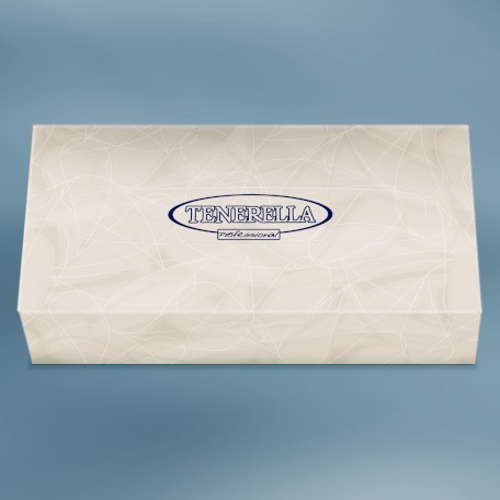 Kosmetiktücher in der Box 2-lagig 100 Tücher